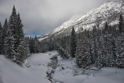 trees winter snow mountains nature creek landscape snowshoe nikon scenery montana january hike trail yellowstonenationalpark ynp 2014 sodabuttecreek bannocktrail dailynaturetnc14 dailynaturetnc15