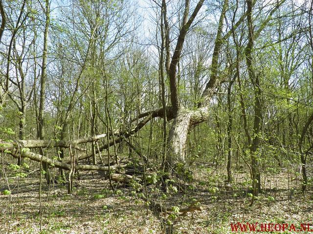 Castricum 15-04-2012 26 Km (61)
