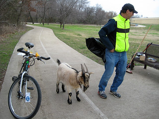 Broom Bike and Billy The Goat | by dickdavid