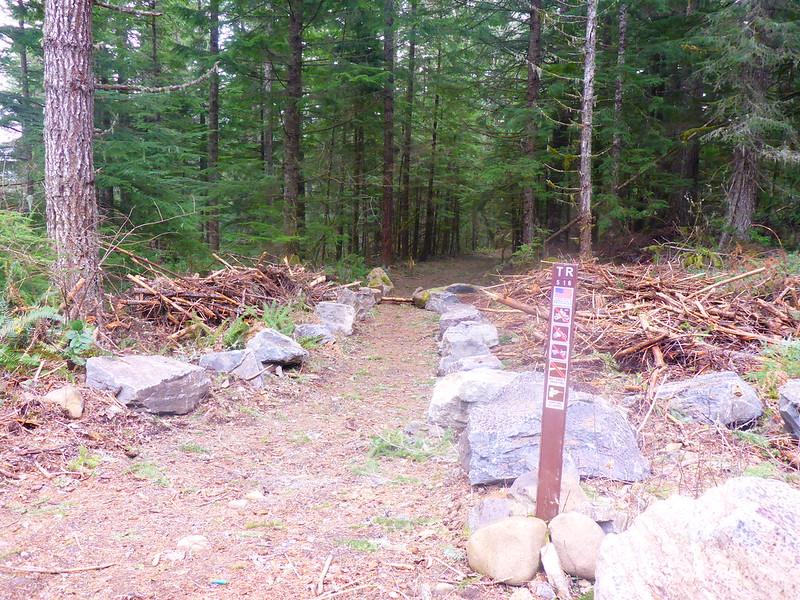 Hillockburn trail #516