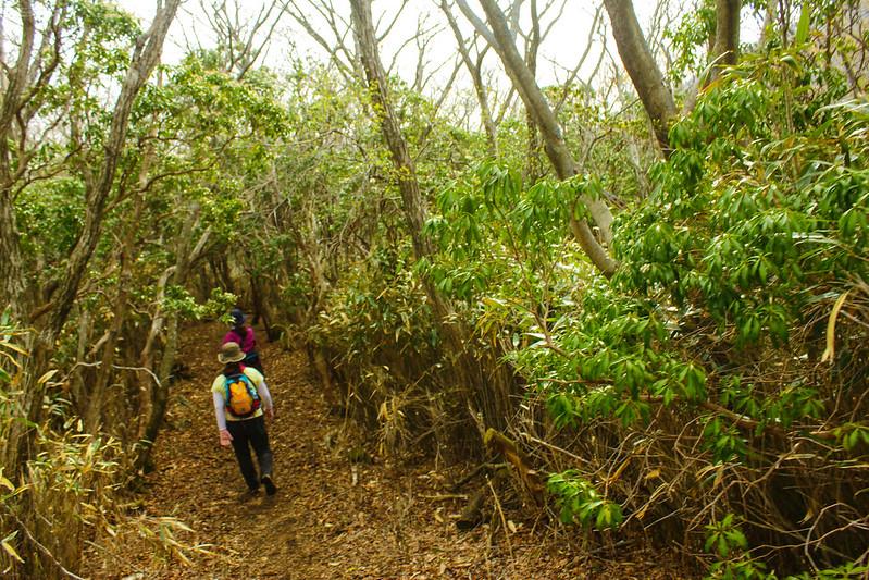 2014-05-06_02202_九州登山旅行.jpg