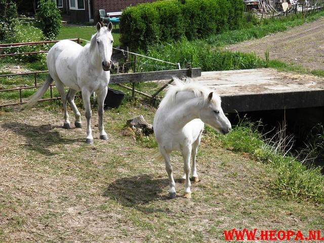 05-05-2011        Dordrecht         25 Km (93)