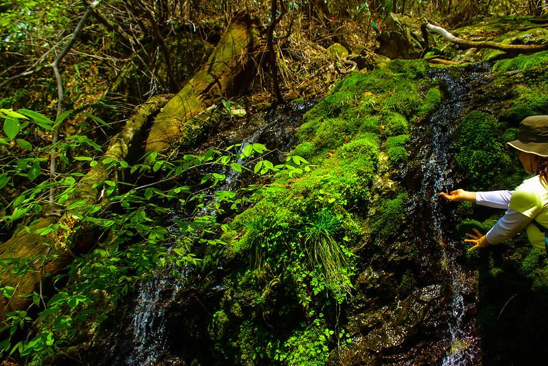 2014-05-06_02597_九州登山旅行.jpg
