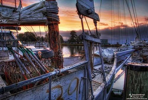 sailboat sunrise boats md maryland fishingboat tilghman chesapeakebay marylandeasternshore tilghmanisland skipjack oystering dogwoodharbor talbotcountymd oysterdredging