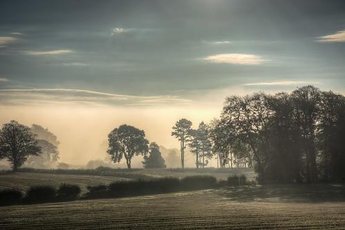 fog south tyne valley clearing beltingham