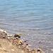 Laguna del Barro
