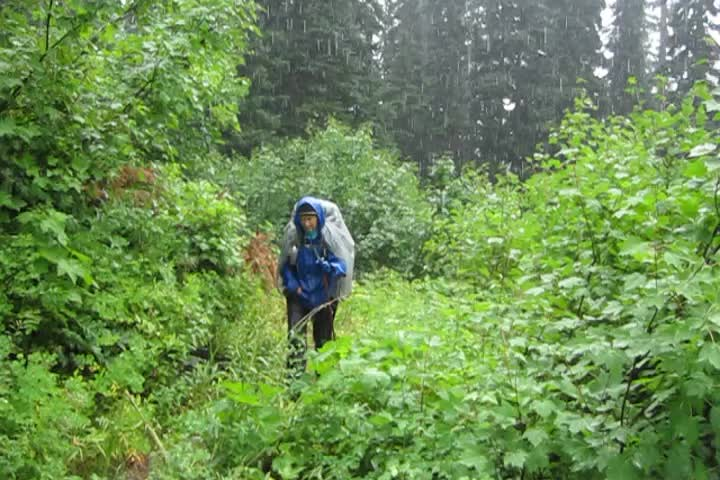 1501 Video of hiking in the rain as we head up the PCT along Brush Creek toward Glacier Pass