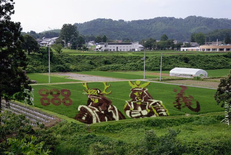 Rice Paddy Field Art in Yonezawa 2016