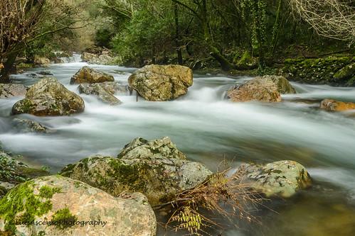 tree portugal water landscape long exposure stones dos luis cascade vinhos ascenso fragas bluring figueiró ssimão