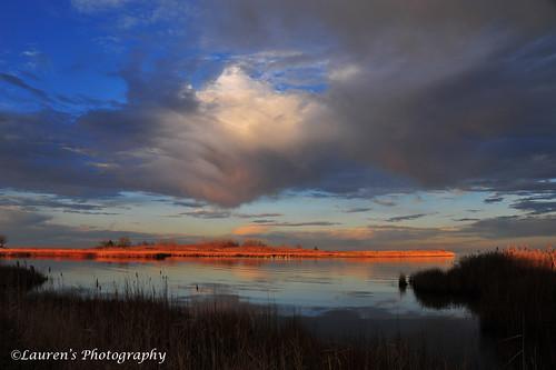 laurensphotography lauren3838photography md maryland tilghman talbotcounty tilghmanisland chesapeakebay easternshore nikon d700 wetlands landscape sunrise clouds knappsnarrows sky bay nature