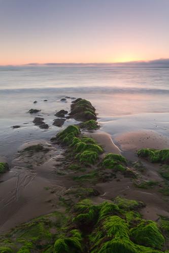 morning ireland sea seascape water sunrise rocks wicklow goldenhour landcape ardanary
