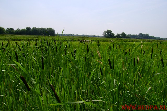 Utrecht               05-07-2008      30 Km (56)