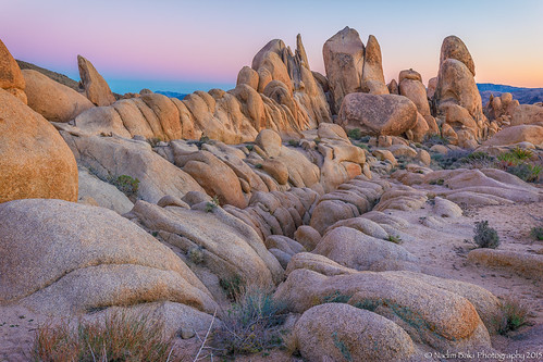 Desert Sunset - Joshua Tree | by Puckman2012