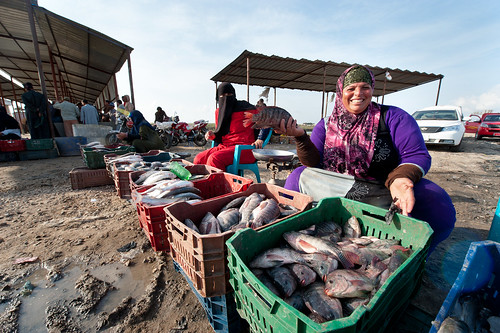 Women selling fish at the market