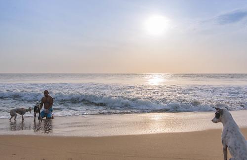 dog beach clouds sunrise play tokina 17 sunrays 35 seashore cwc d610 tokina1735 chennaibeach chennaiweekendclickers cgold covelongbeach nikond610 cwc540
