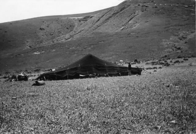 Maroc, une khaïma, avril 1965