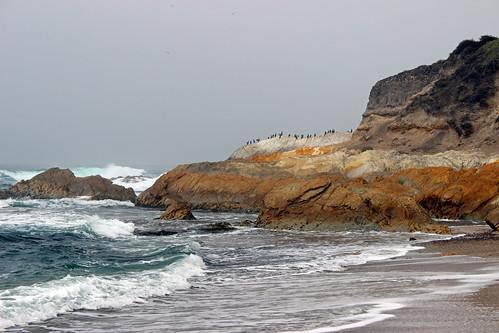 ocean california seascape cormorants waves montanadeoro