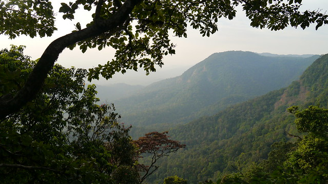 ... view from sunset point, Agumbe