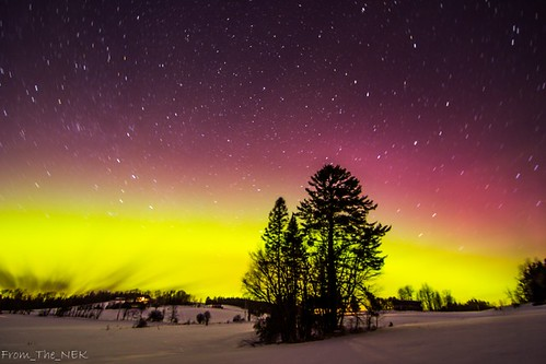 Aurora_WhitePine2 | by Tim_NEK
