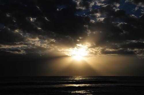 beach sunrise florida hollywood