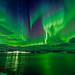 Aurora over Bo Fjord, Norway by Wayne Pinkston