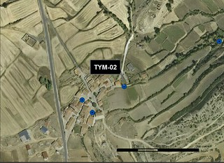 TYM_02_M.V.LOZANO_PRADO_ORTO 1