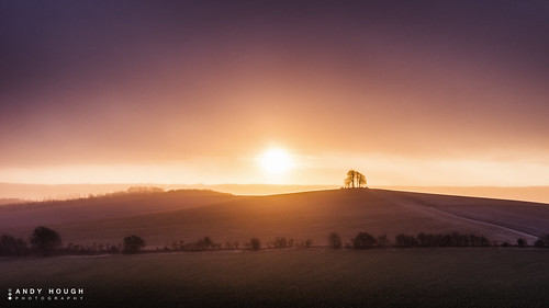 morning winter england sun nature weather sunrise countryside unitedkingdom sony wallingford wittenhamclumps southoxfordshire barrowhill a99 sonyalpha andyhough slta99v andyhoughphotography