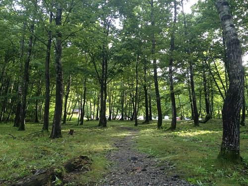 白山 白水湖畔ロッジから登山口への道 | by ichitakabridge