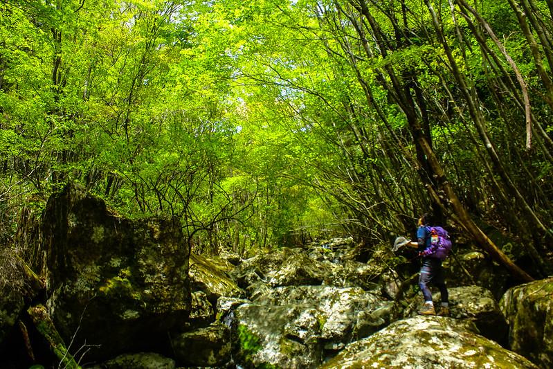 2014-05-06_02652_九州登山旅行.jpg