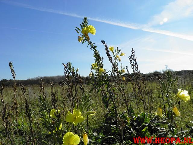 2011-10-15      Castricum 26 Km   (80)