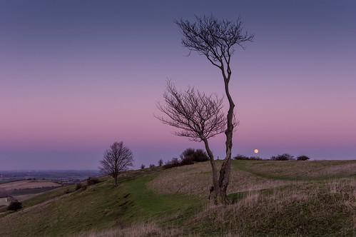 moon bedfordshire moonrise deaconhill pegsdonhills chalklands
