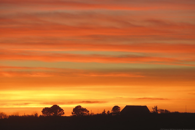 Sunset 1 of 215