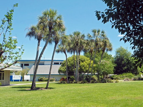 park landscaping buildings palmtrees weekiwachee florida