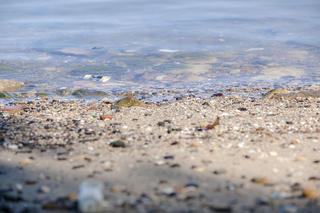 World Clean Up Day copyright Rosie Nicolai