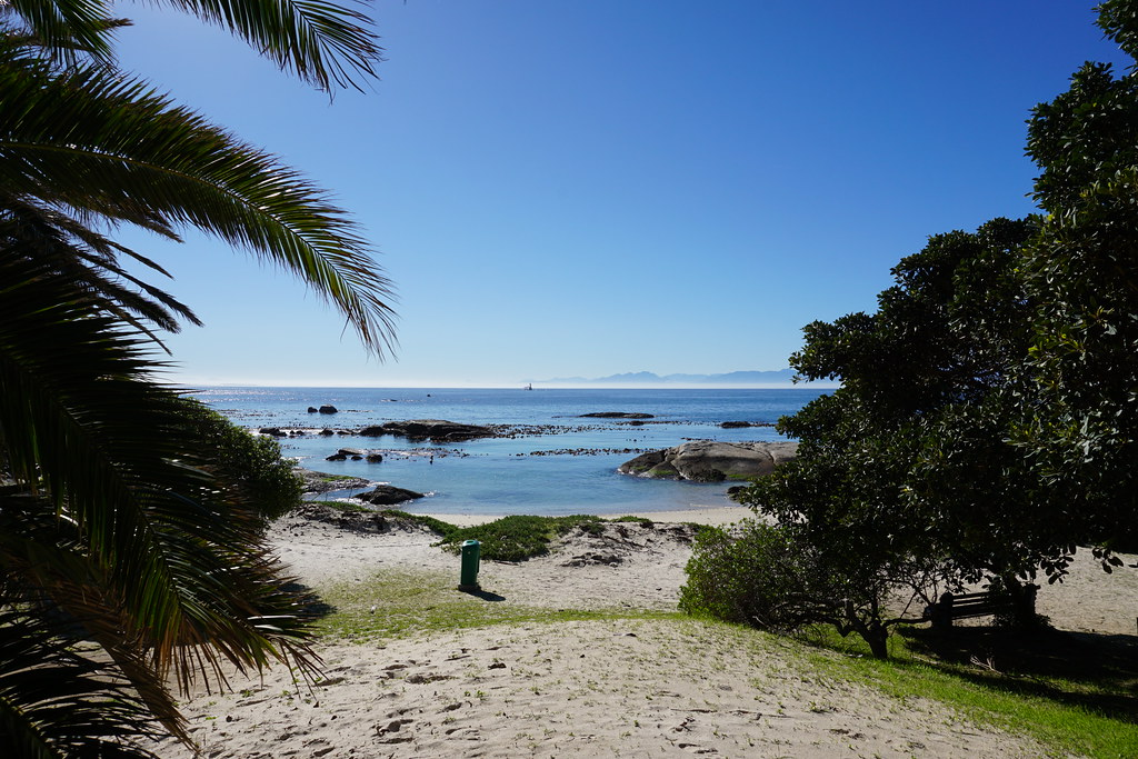 Boulders Beach Penguin Colony, Cape Peninsular, South Africa