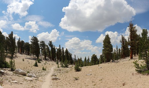 1049 Cumulus Clouds begin to form as I hike south on the John Muir Trail toward Crabtree Meadow | by _JFR_