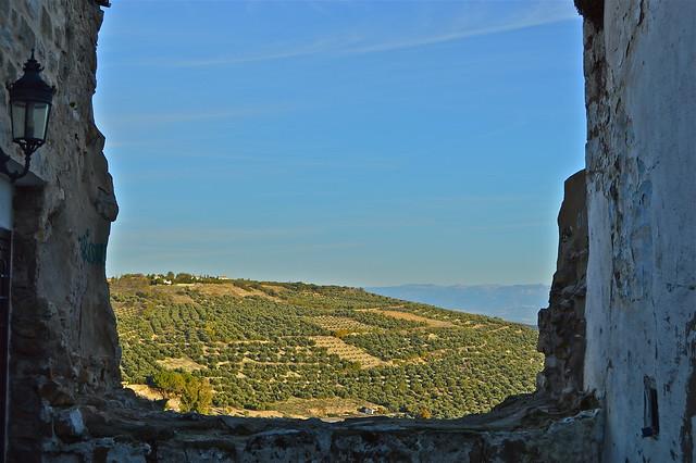 Úbeda tierra del olivo.