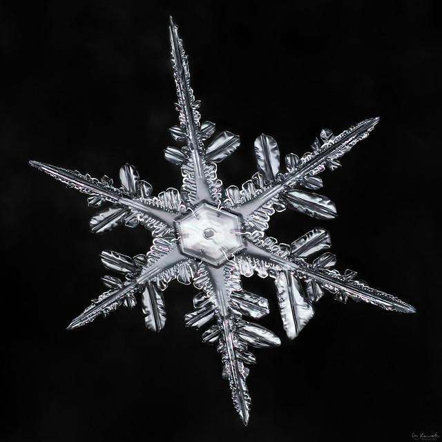 Snowflake-a-Day #29