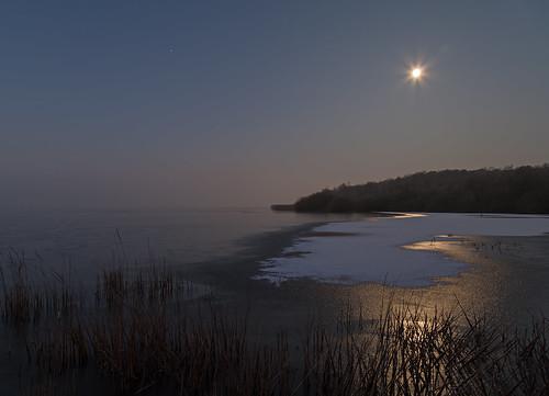 winter sun cold ice sunrise frozen natur sonnenaufgang morgen naturfotografie steinhudermeer zugefroren icecover eisbedeckt