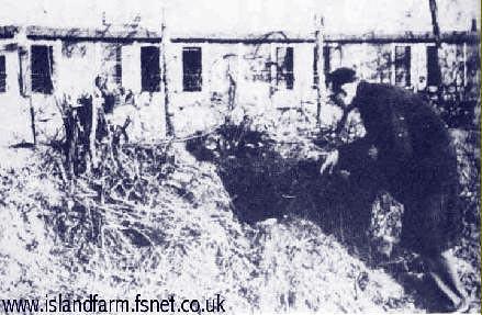 Salida del tunel en el campo de Davies