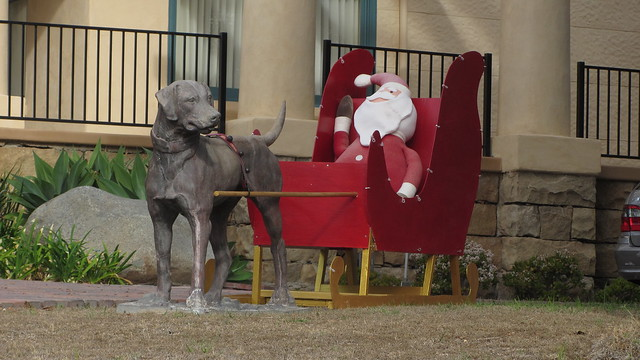 IMG_7611 santa barbara dog statue prep for xmas