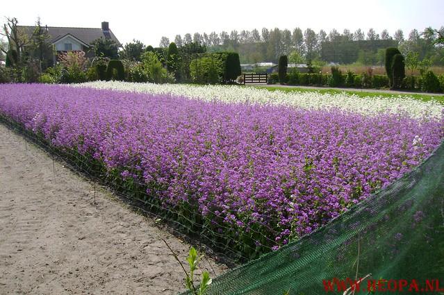 Den Haag          03-05-2008   41.35 Km (41)