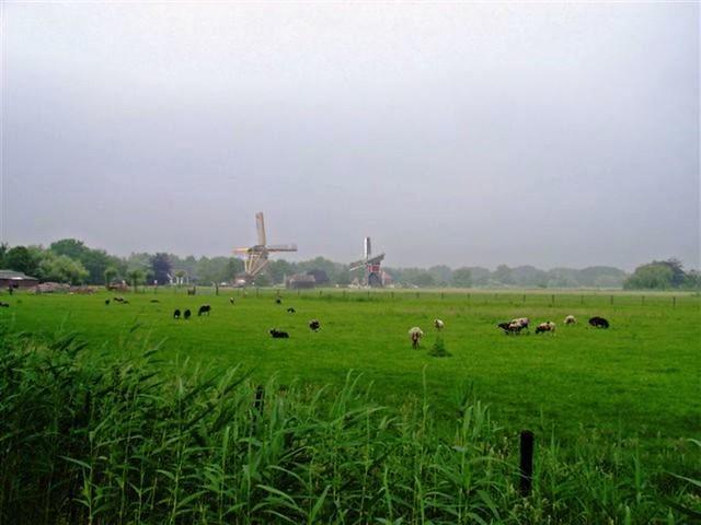 Oud Zuilen 20070609   40 km (46)