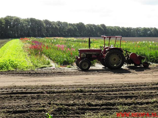 2010-09-04             Oosterbeek           25 Km (53)