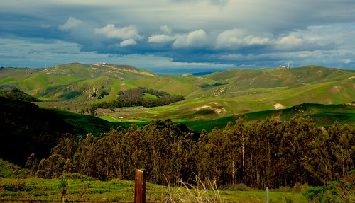 Back Roads of Lompoc | by Harold Litwiler, Poppy