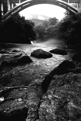 bridge camera1 japan nature tokyo water river monochrome blackandwhite landscapes