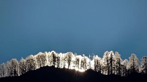sunrise licht sonne sonnenaufgang gutenmorgen