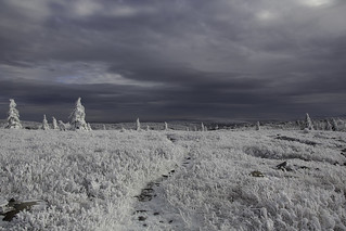 Dolly Sods Winter Solstice Trip 2014 | by lifeinthedistrict