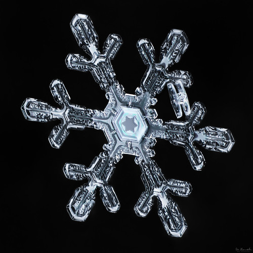 snowflake winter sky snow macro ice nature water frozen crystal flake fractal mpe focusstacking thinfilminterference
