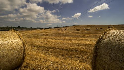 sonya7rii dorset sigma sigma1735mmlens bales haybales harvest crops summer birthdaymicrominimoon telegraphpoles telegraphtuesday landscape clouds cloudscape winterbornekingston explored a7ii α7ii